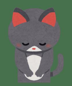 お詫び ネコ