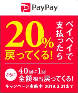 PayPay販促