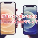 iPhone12 miniでしょ